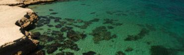 Excursión Peninsula Valdés